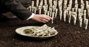 دولار واستثمار