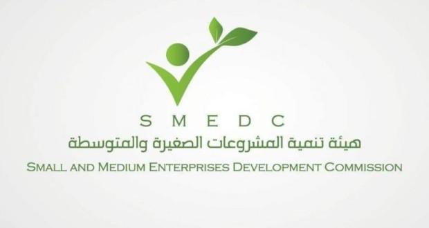 هيئة تنمية المشروعات الصغيرة